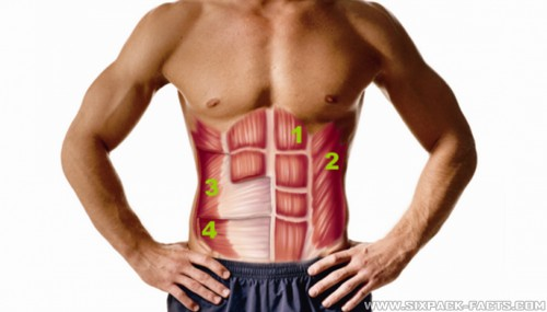 5 Common Mistakes Holding Your Abs Hostage