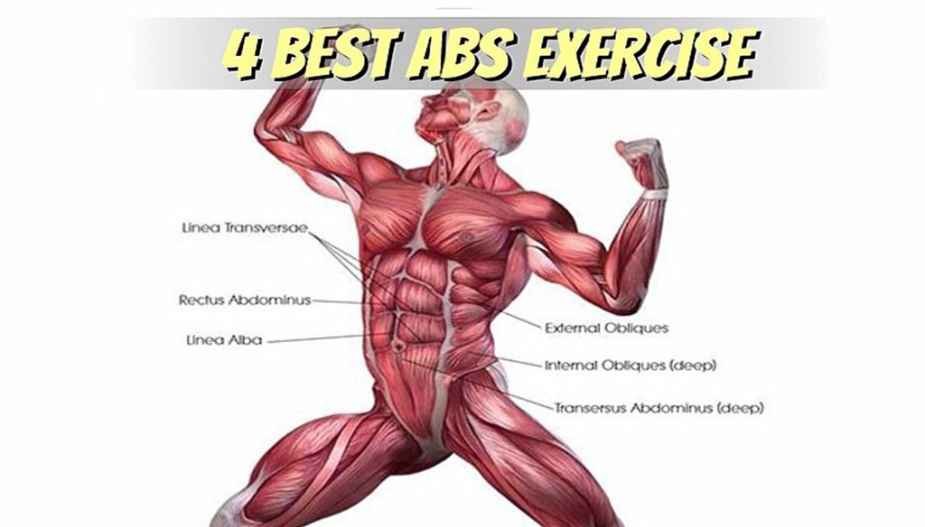 4 Best Abs Exercise Sixpack Facts