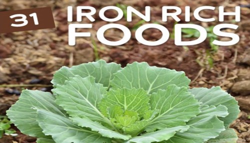 31 Iron Rich Foods