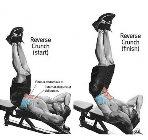 REVERSE CRUNCH Start & Finish
