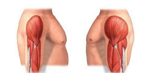 5 Symptoms Of Protein Deficiency