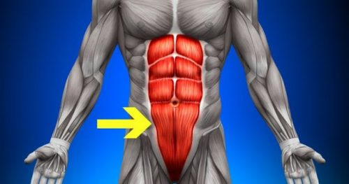 The Top 3 Core Strength Training Exercise Techniques