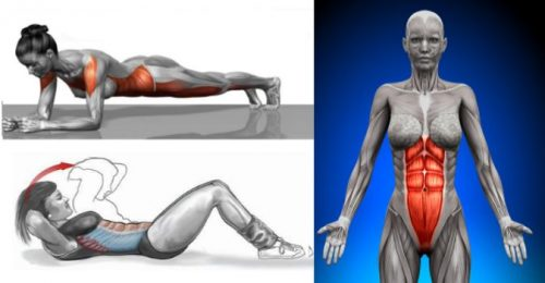 Plank vs. Crunch: Which Is the Best Exercise for Abs and Core?