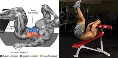 Lower Abs Muscle Gain With 10 Exercises