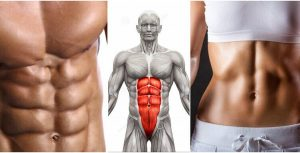 Can Ab Exercises Burn Belly Fat?