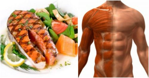 Best Food To Build Lean Muscle